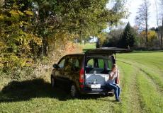 Mercedes Citan I, Renault Kangoo II W